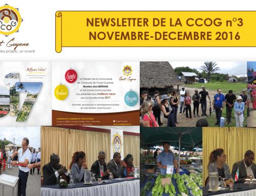 Newsletter n°3 Novembre-Décembre 2016