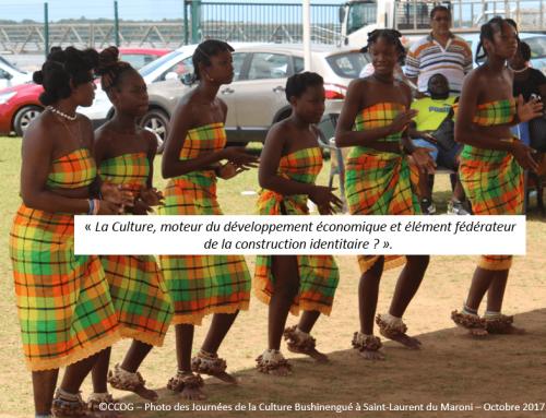 Première rencontre sur le Schéma Territorial de Développement Culturel (STDC) dans l'Ouest Guyanais