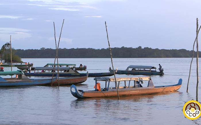 Territoire de l'Ouest Guyanais