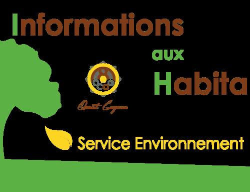 Bonnes pratiques à adopter pour la collecte des déchets verts et des encombrants