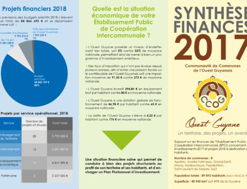 Synthèse finances 2017 de la CCOG