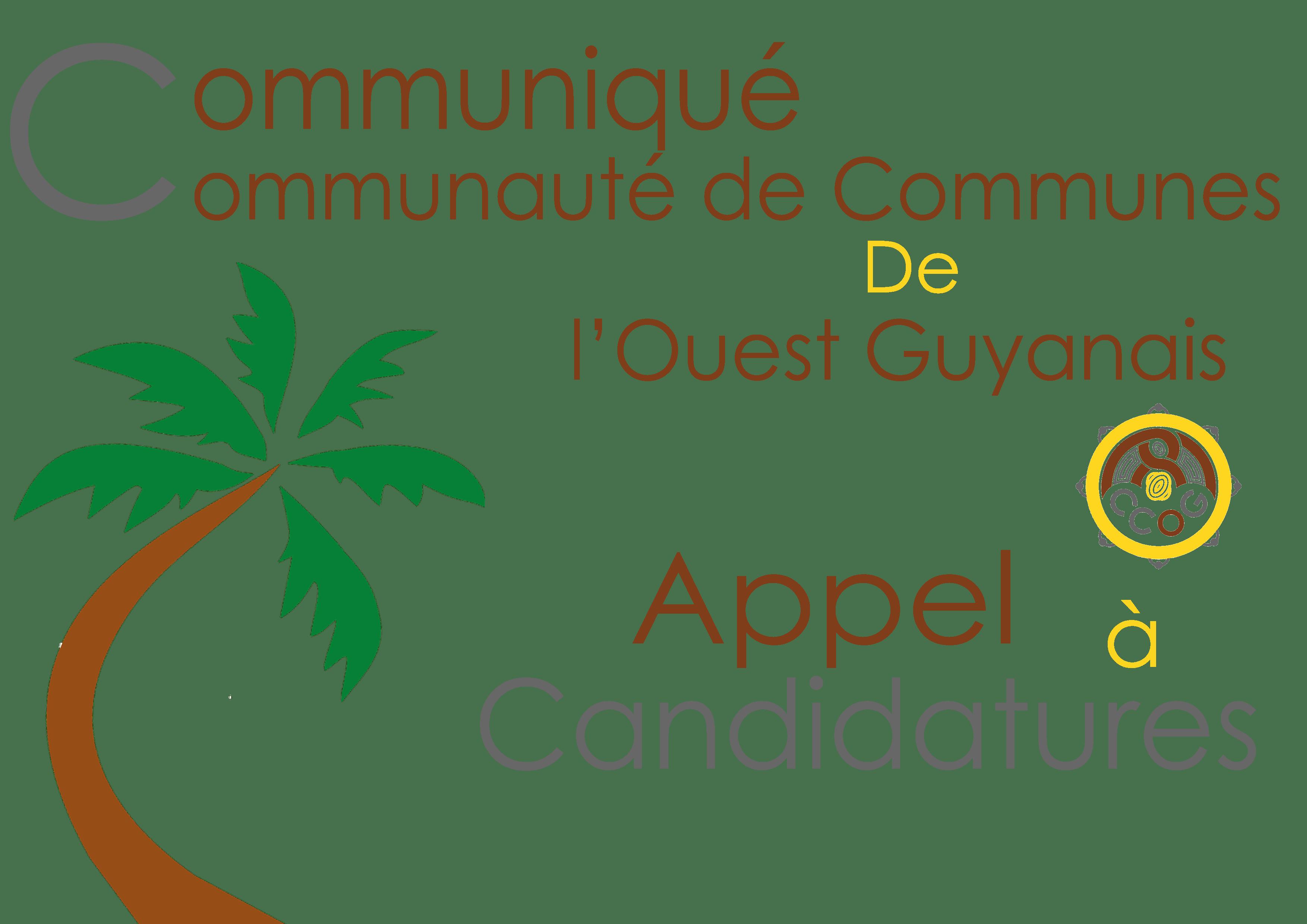 Comité de Direction de l'Office de Tourisme de l'Ouest Guyanais : Appel à représentation